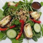 Salade-repas (la Chèvre chaud)